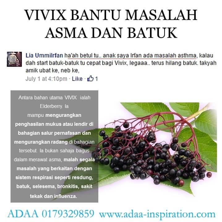 vivix 8