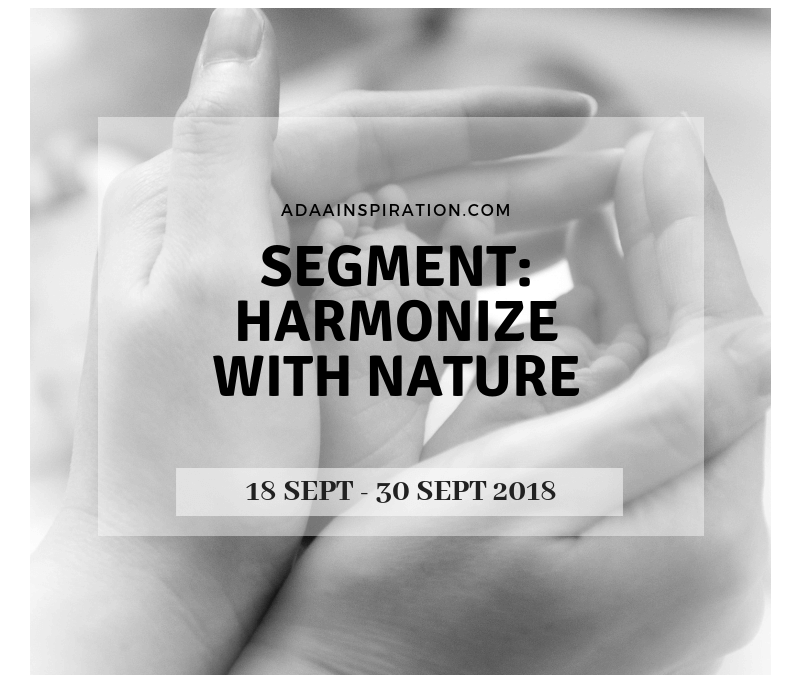 GIVEAWAY: HARMONIZE WITH NATURE